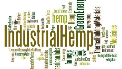 Photo of Global meeting place of the hemp industry in Cologne
