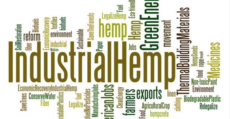 Global meeting place of the hemp industry in Cologne - اخبار زیست فن