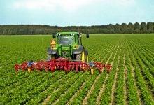 کنترل سموم آفتکش برای حفاظت از گیاهان