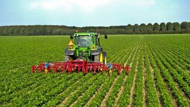 Photo of کنترل سموم آفتکش برای حفاظت از گیاهان
