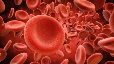 Photo of مواد ژنتیکی میکروبها در خون اسکیزوفرنیها