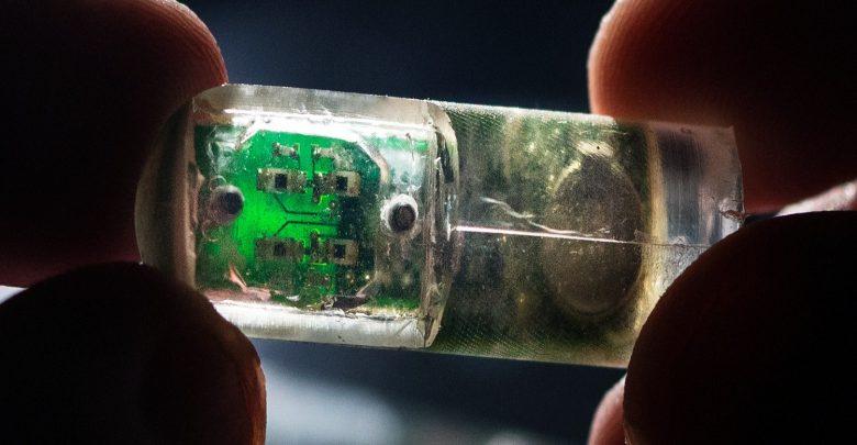 دانشمندان با طراحی باکتری خاصی از باکتری ها برای بررسی سلامت معده بهره جستند