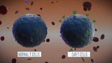 "Photo of CAR-T Cells Just Got Some ""Killer"" Competition"