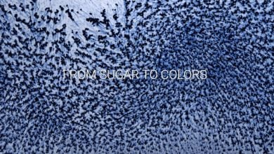 Photo of تولید رنگ از مواد قندی با کمک میکرو ارگانیسم ها