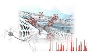 Photo of شبیهسازی فعالیت مغز به کمک نانومواد