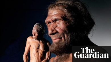 Photo of Scientists to grow 'mini-brains' using Neanderthal DNA
