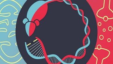 Photo of Mutation links bipolar disorder to mitochondrial disease
