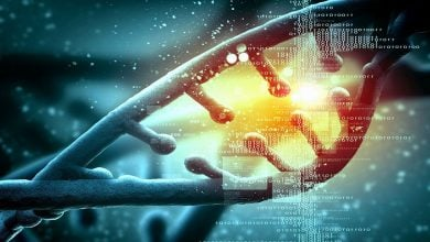 Photo of Race Is Not a Genomic Phenomenon