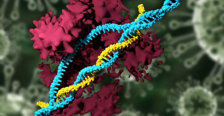 Nonviral CRISPR
