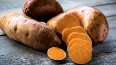 Photo of IBSNRK1 GENE IMPROVES STARCH CONTENT AND QUALITY IN SWEET POTATO