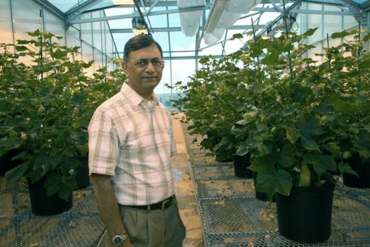 Selective fertilization - اخبار زیست فن