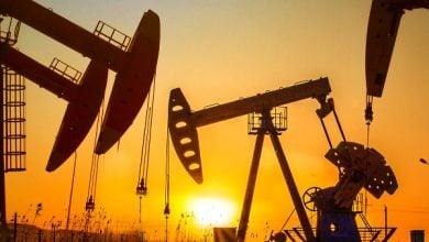 پاک کننده های گیاهی در صنعت نفت