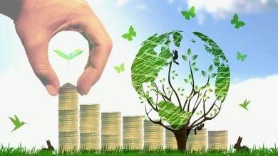 Photo of تغییرات اساسی برای بقا در اقتصاد زیستی