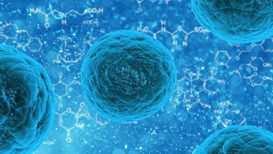 Photo of Protein Discovery May Explain Why Patients Develop Resistance to New Anti-cancer Drugs