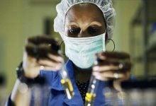 Photo of درمان بیماریهای کلیوی با ژن درمانی