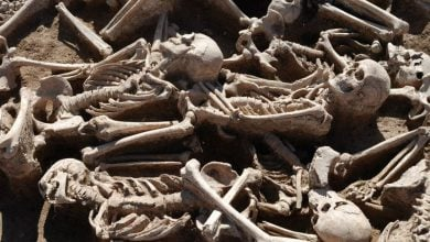 Photo of Hepatitis B Viruses Discovered in Ancient Human Remains