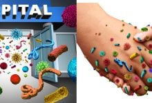 Photo of خطر ژنهای مقاومت داروئی مشترک میان باکتریها
