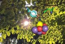 Photo of کشف مراحل جدیدی از فرایند تولید اکسیژن