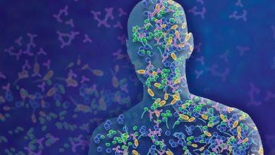 Photo of پوست، مرز جدیدی در پزشکی میکروبی