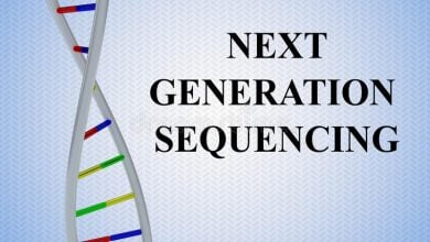 Photo of Next-Generation Sequencing Adds Value by Detecting More Mutations Than Polymerase Chain Reaction in Melanoma