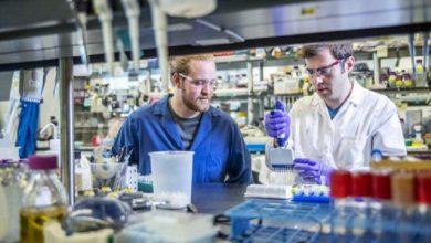 Photo of کشف روشی جدید برای سنتز DNA
