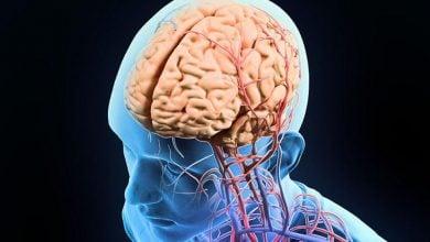 Photo of آیا ویروس هرپس در آلزایمر نقش دارد؟