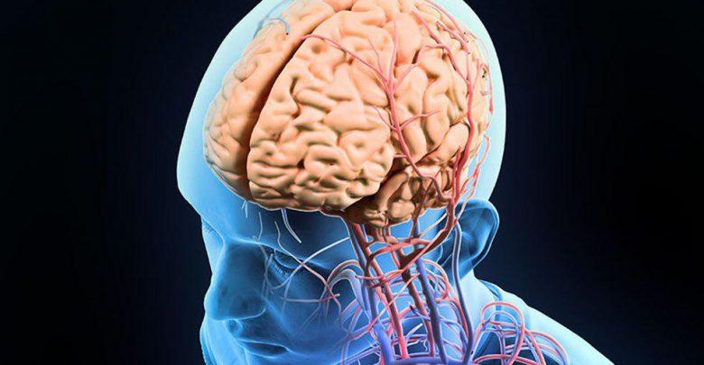 نقش ویروس هرپس در آلزایمر