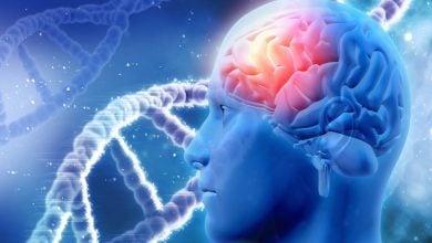 Photo of تفاوت ژنتیکی در ابتلا به گلیوما