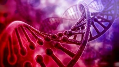 Photo of C6 gene unlocks mysteries to our immunity