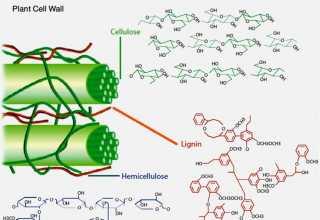 روشهای پیشتصفیهی پسماندهای لیگنوسلولزی