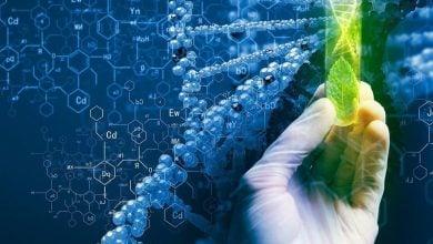 BIOFORTIFICATION THROUGH BIOTECH - اخبار زیست فن