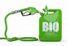 استفاده از کاتالیزور برای تولید سوخت زیستی