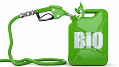 Photo of استفاده از کاتالیزورها برای تولید سوخت زیستی