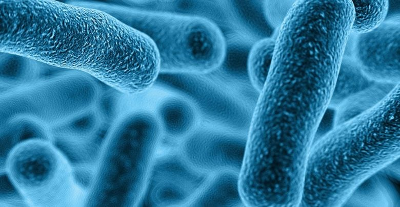 تولید دارو آنتیبیوتیک