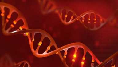 درمان کمخونی داسیشکل با آنزیم جهشیافته Cas9