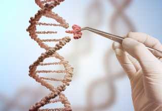 آسیبهای ژنتیکی با ویرایش ژن توسط CRISPR/Cas9