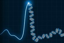 نقش ژنتیک در بیماریهای قلبی