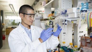 Photo of کشف چگونگی حفاظت از مخمر در تولید سوخت زیستی با استفاده از CRISPR