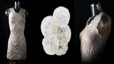 تولید محصولات زیستی با قارچ