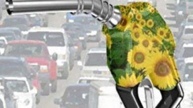 Photo of کاهش آلودگی هوای ناشی از اتوبوس ها توسط دیزل زیستی خالص