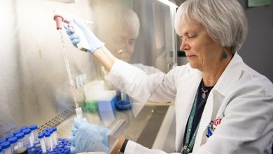 Photo of Study provides new insights for ways to use cell metabolism to treat cancer