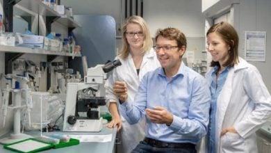 سرطان کولون ناشی از استرس باکتریها و سلولها