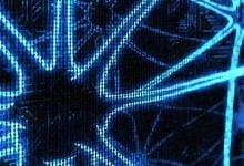 Photo of پیشبینی پاسخ به ایمونوتراپی با استفاده از هوش مصنوعی