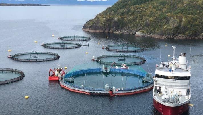 Closed salmon system - اخبار زیست فن