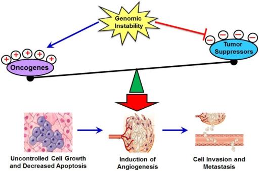 نقش ژن ها در سرطان