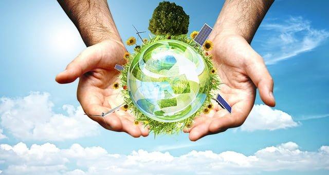 biomass uses