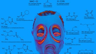 Photo of Microbiome serves as sentinel for nerve gas exposure