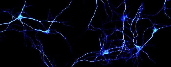 کنترل درد به کمک مهندسی ژنتیکی نورونها