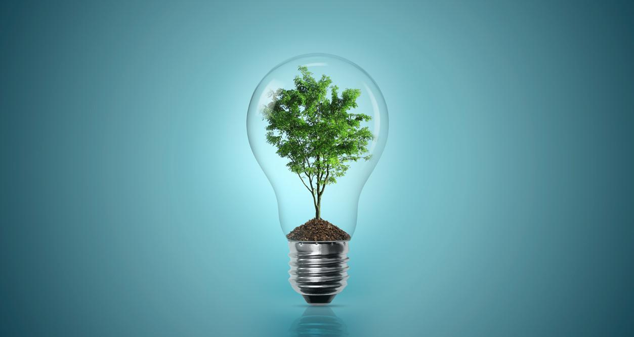 تولید انرژی از زیستتوده