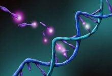 ارتباط فاکتورهای رشد و سرطان